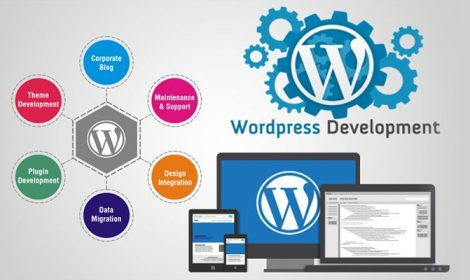 Service of Capaz Softech Pvt. Ltd. - Wordpress Development